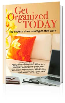 Get Organized Today book photo